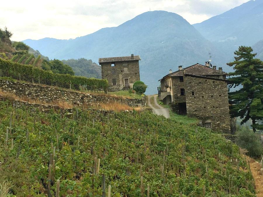 Bresaola Valtellina